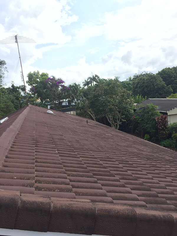 Pressure Wash Roof Cleaning Before