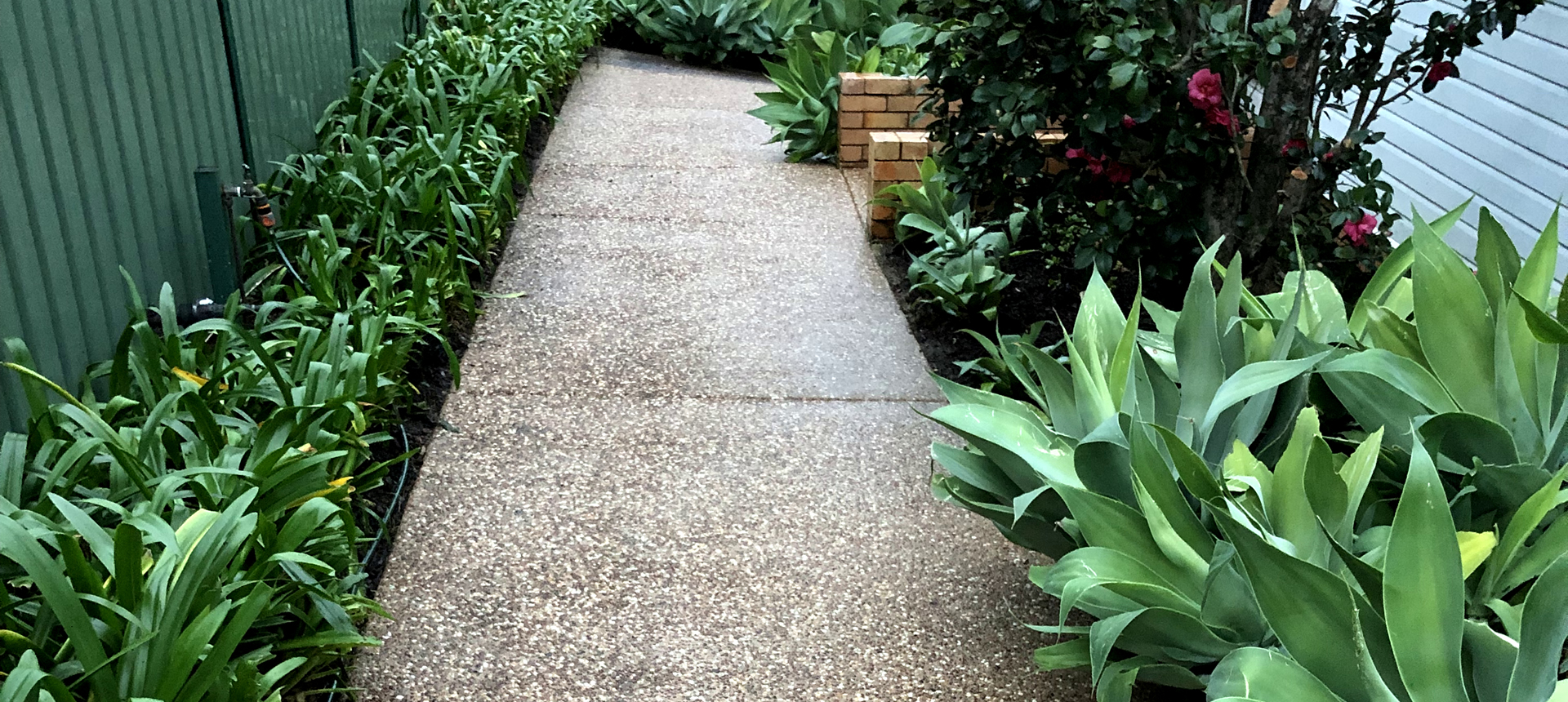 Residential Pressure Washing Clean Path After
