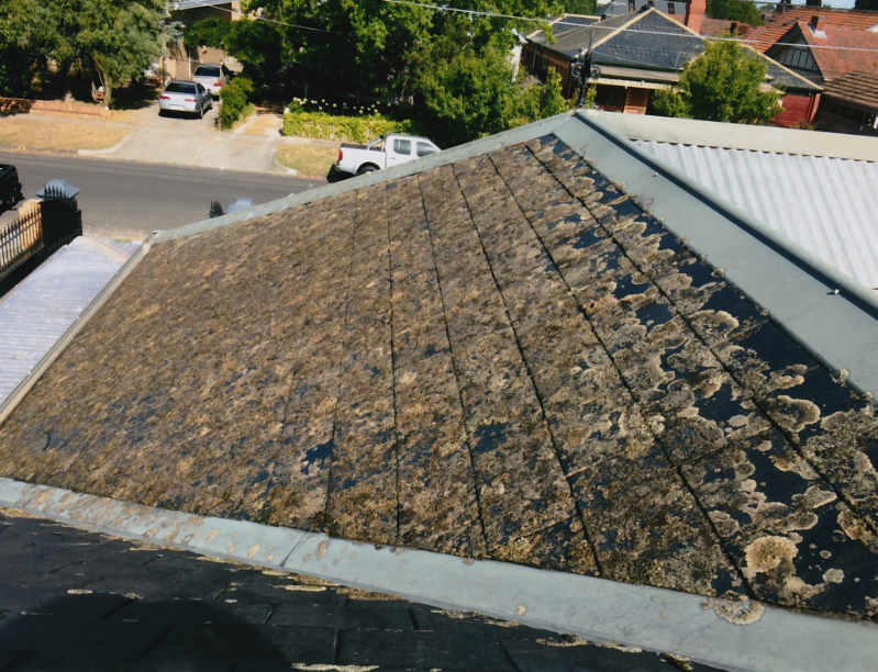 Soft Wash roof Sunshine Coast